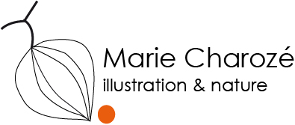 Marie Charozé