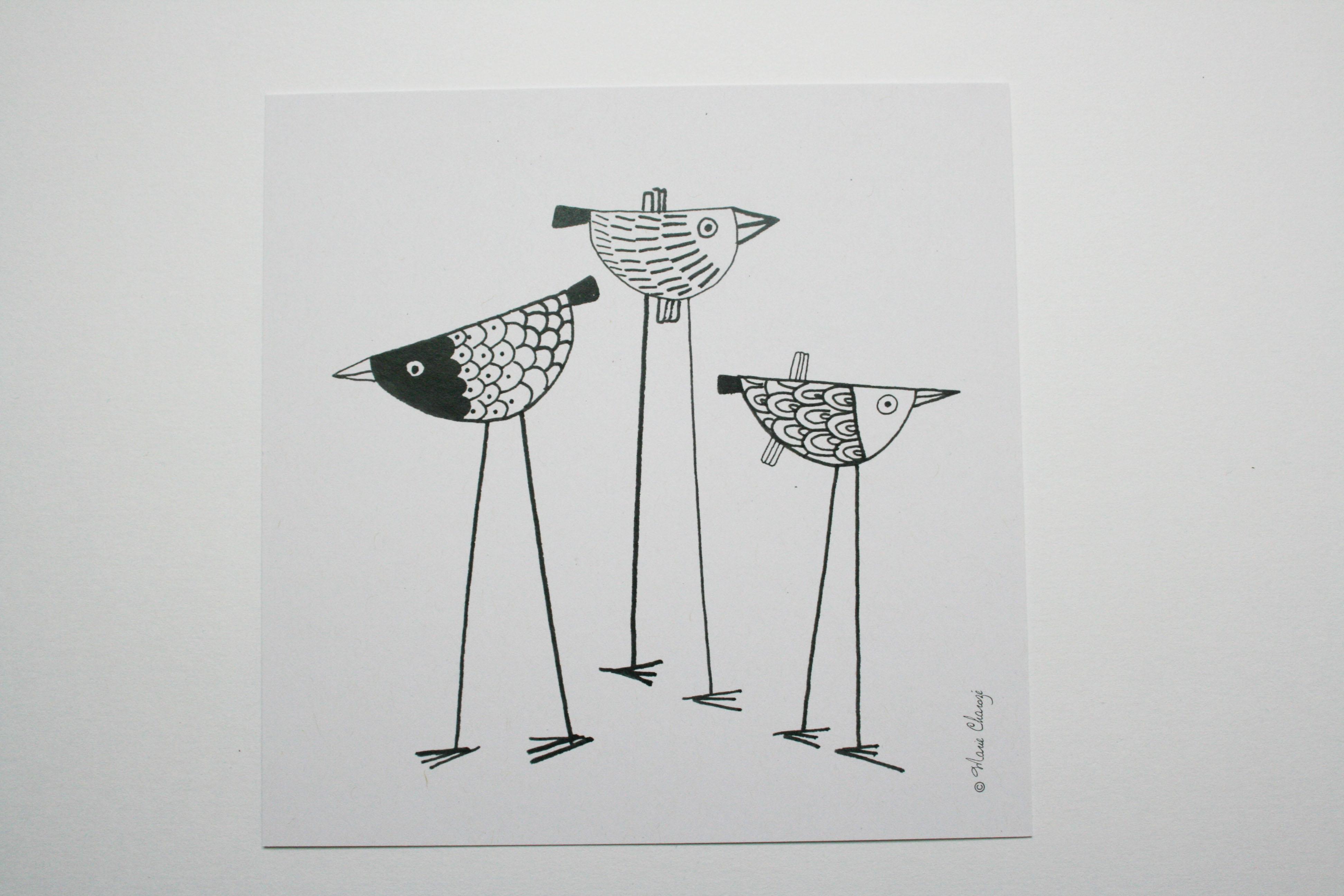 0413 Oiseaux