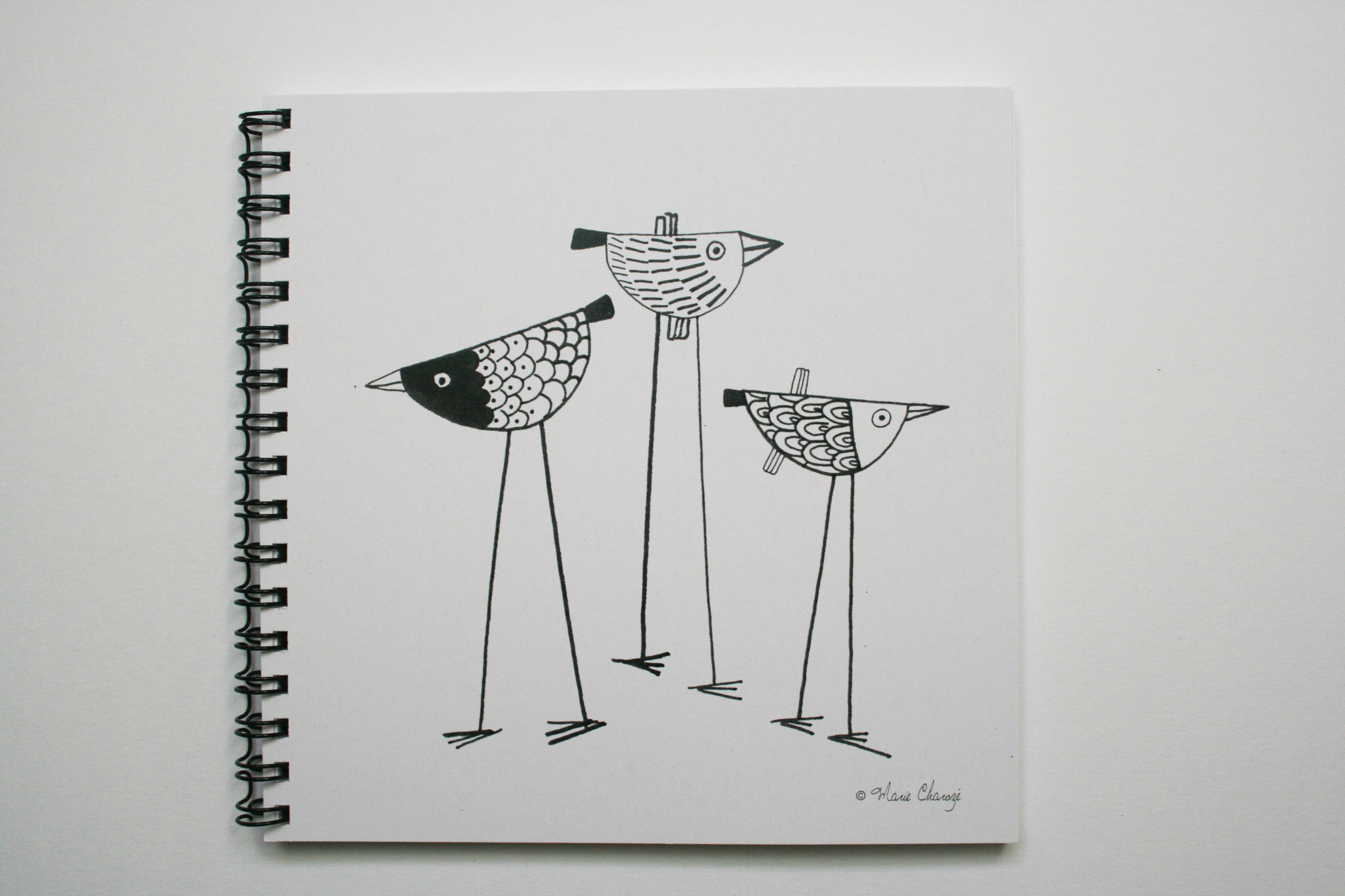 CH05 Oiseaux