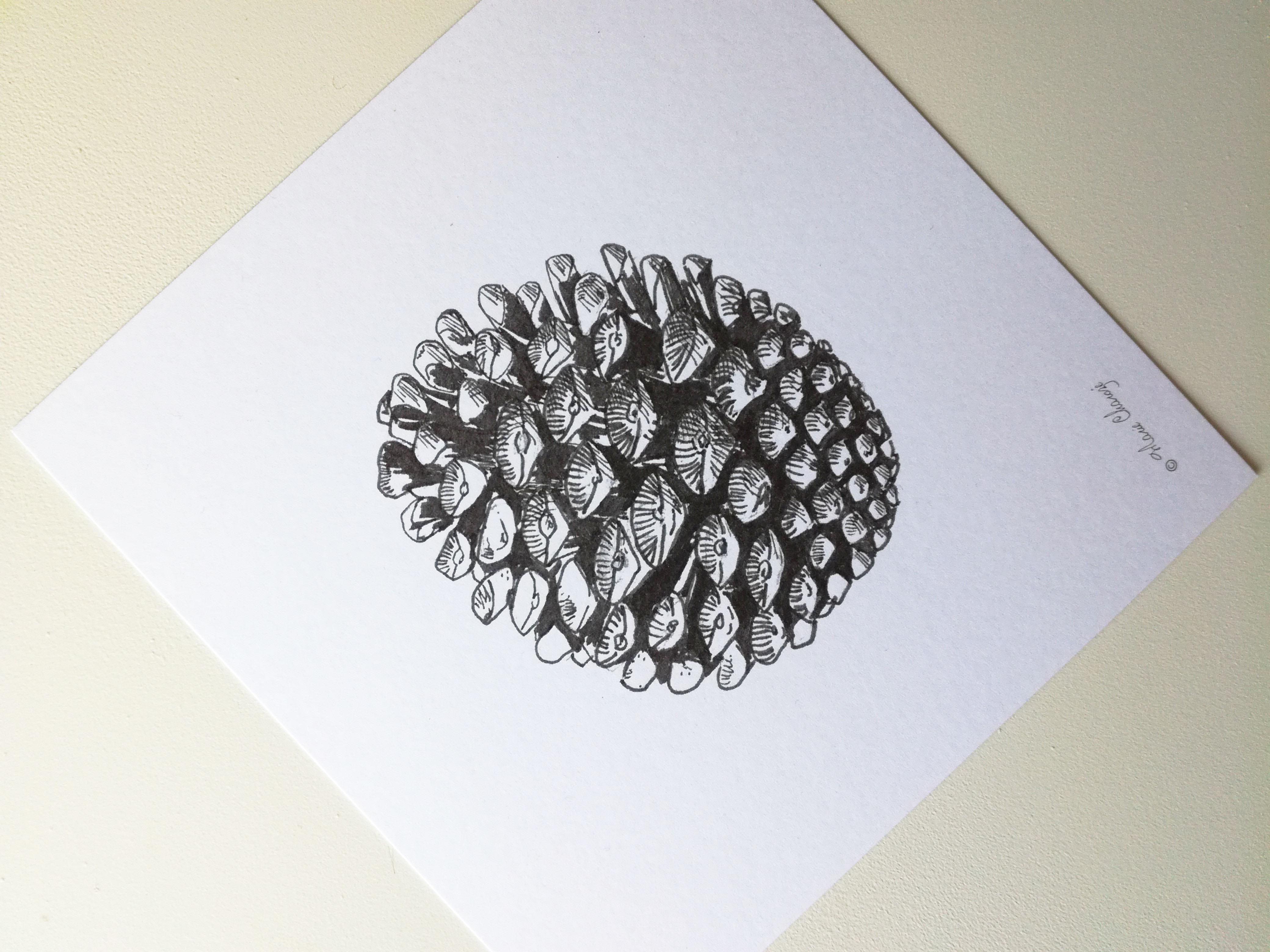 0406 Pomme de pin roro