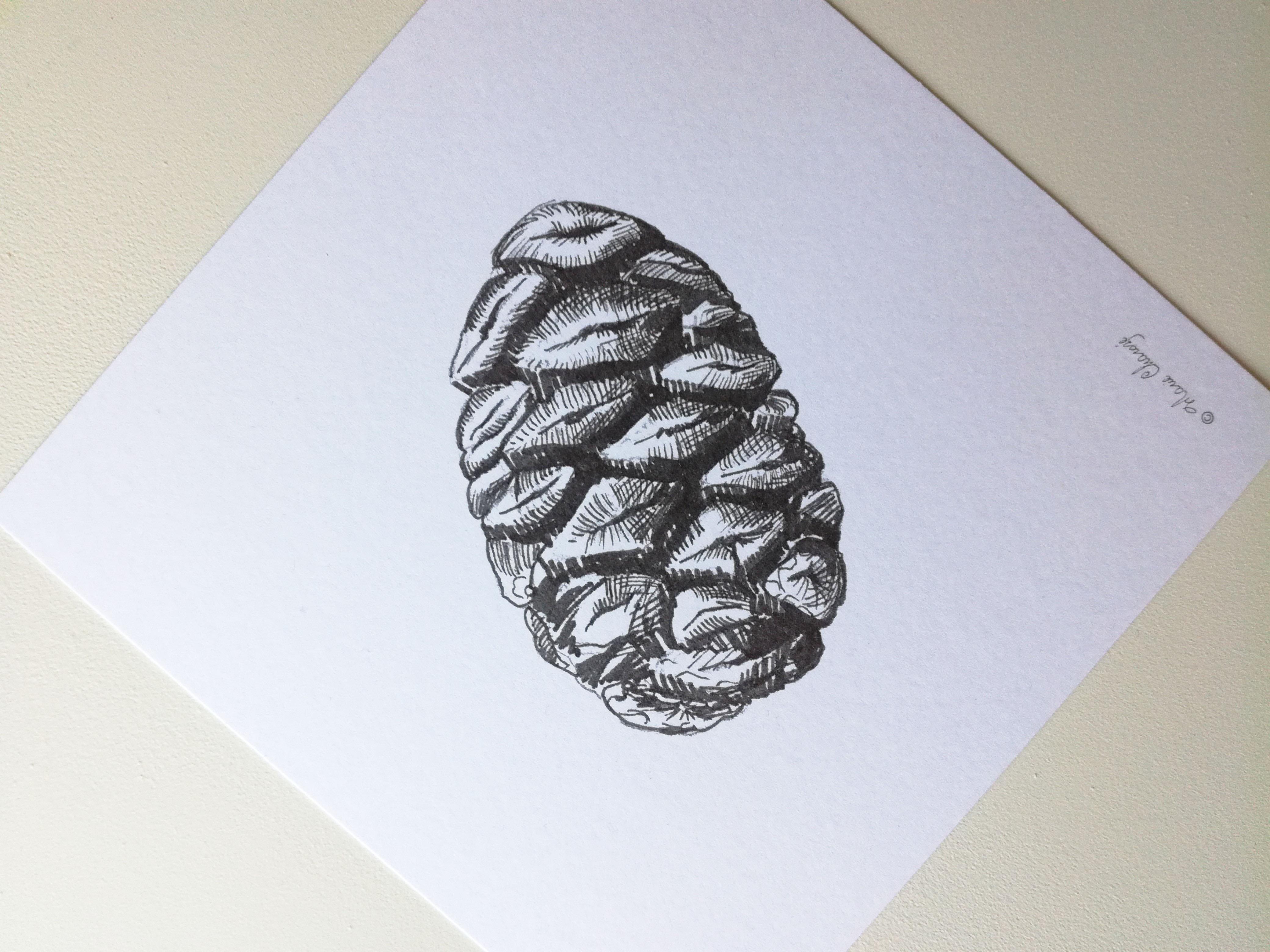 0408 Pomme de pin ro