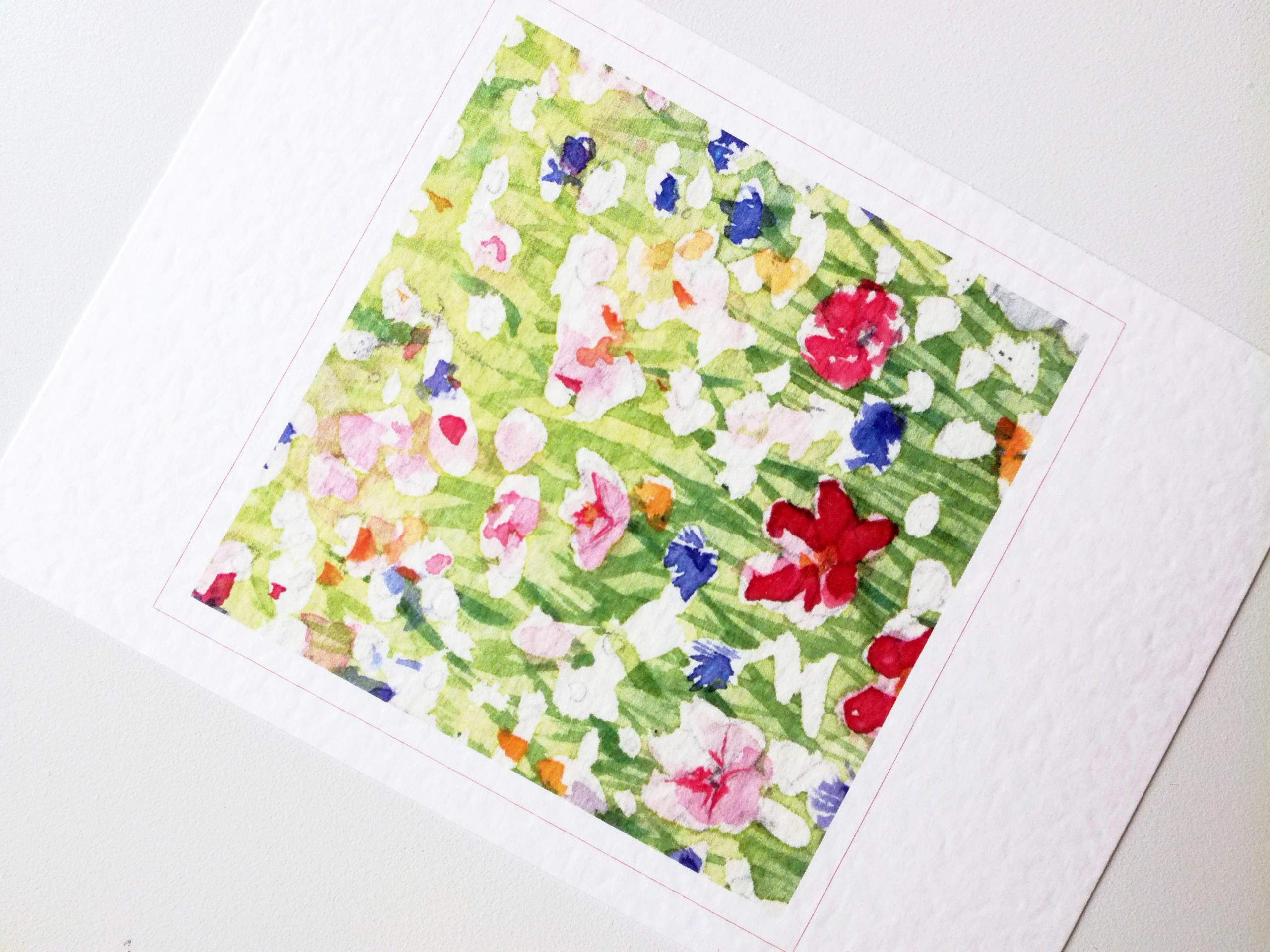 0105B Fleurs des champs